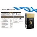 Telomeres - ADN activation