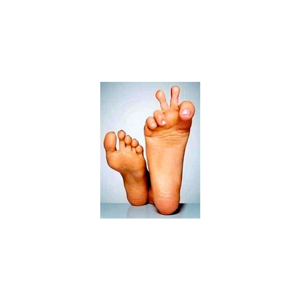 Poudre Swider pour pieds