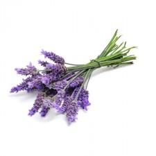 Eau Florale - Lavande Fine Bio