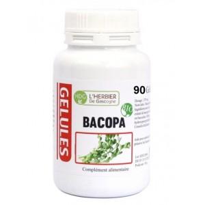 Brahmi - Bacopa