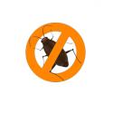 Anti-cafards Cafaran