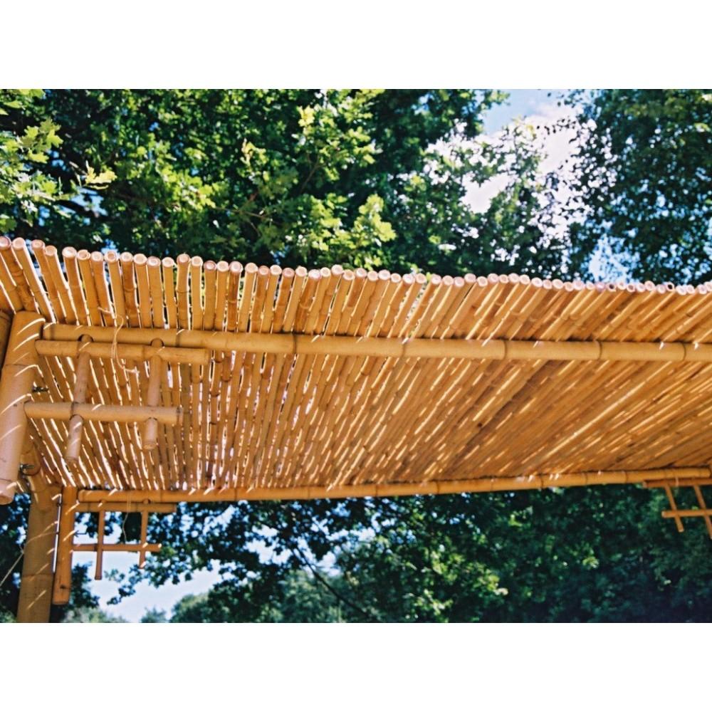clotures bambou naturel maison jardin consomacteurs. Black Bedroom Furniture Sets. Home Design Ideas