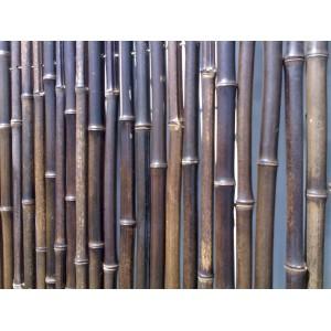Clotures en bambou noir