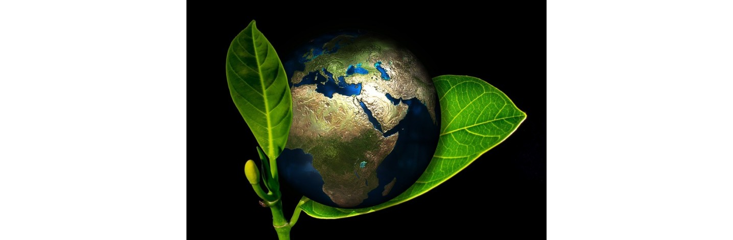 Produits bio earthing mise à la terre - Maison & Intérieur | Consomacteurs
